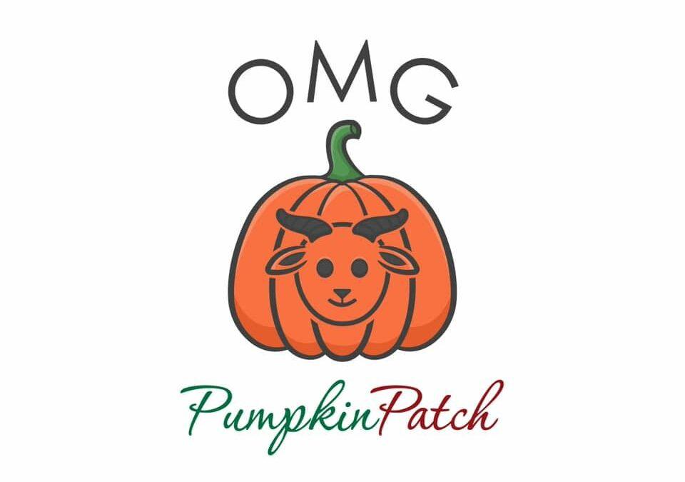 OMG Pumpkin Patch